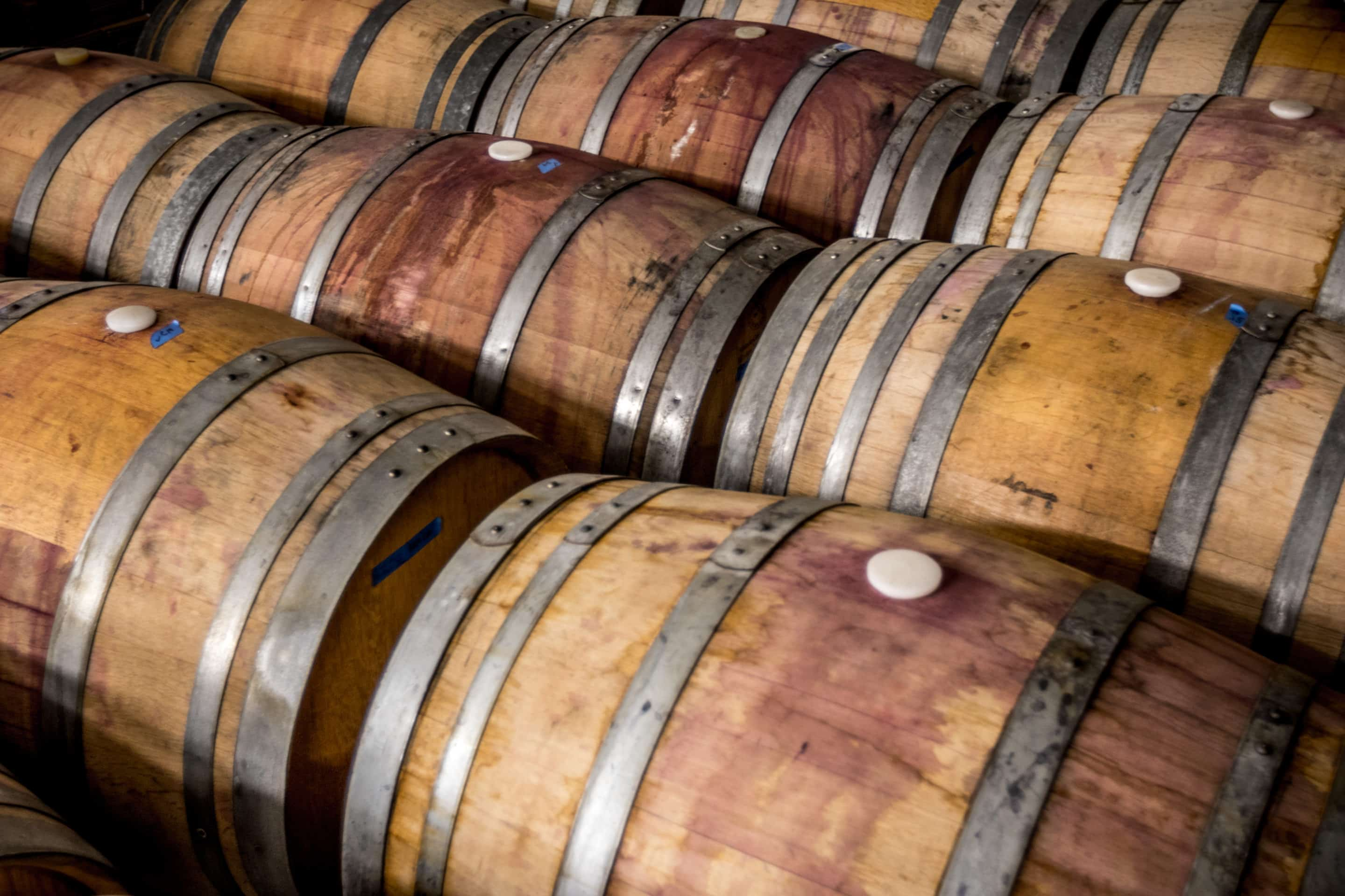 Wine Fermenting - Potter Wines